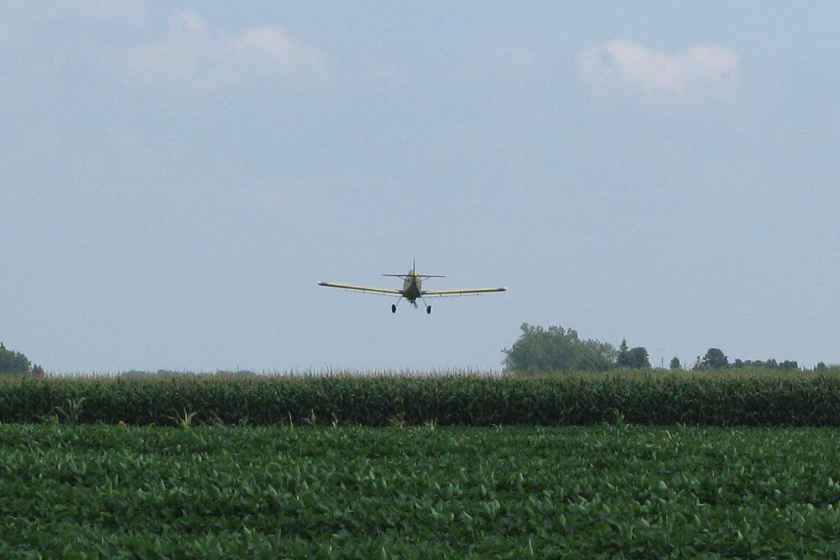 Mercado de trabalho: em quais setores o piloto de avião pode atuar